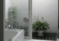 光庭に植木鉢を。